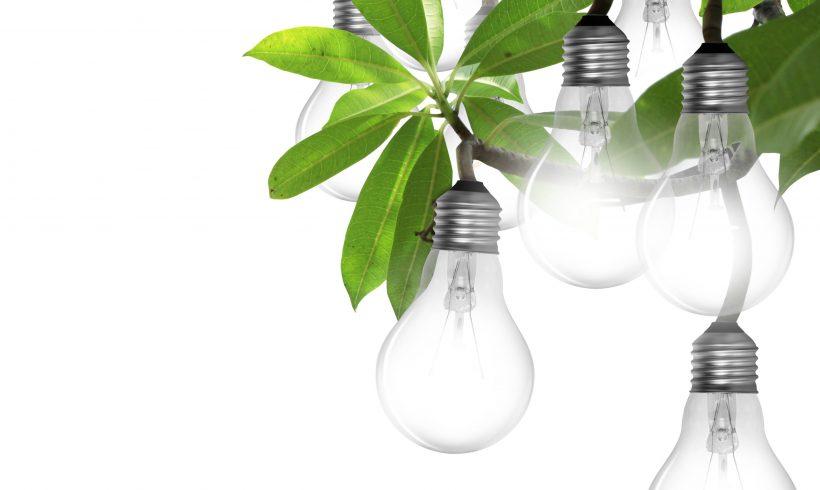 8 decembrie – Gala Moldova Eco Energetică